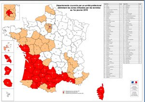 Carte infestation termites CHARENTE MARITIME